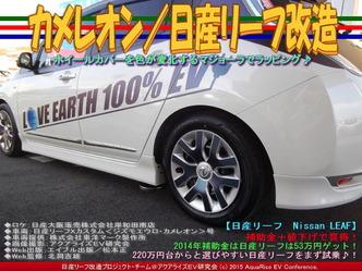 カメレオン/日産リーフ改造03