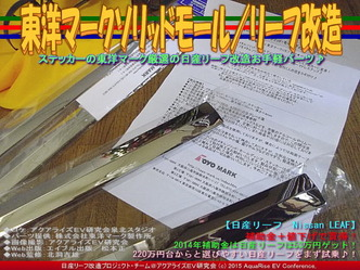 東洋マークソリッドモール/リーフ改造04