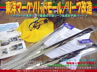 東洋マークソリッドモール/リーフ改造03
