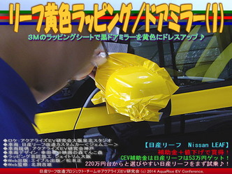 リーフ黄色ラッピング/ドアミラー(1)06