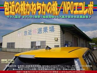 包近の桃/リーフ改造NPOエコレボ01