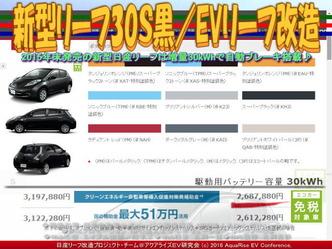 新型リーフ30S黒/EVリーフ改造02