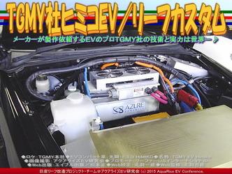 TGMY社ヒミコEV/リーフカスタム03