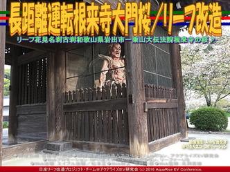 長距離運転根来寺大門桜/リーフ改造03