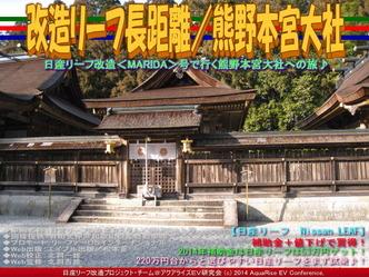 改造リーフ長距離/熊野本宮大社06