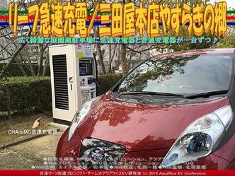 リーフ急速充電/三田屋本店やすらぎの郷03