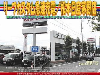 リーフカスタム急速充電/松本日産茅野店01