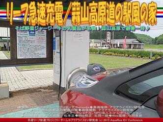 リーフ急速充電/(2)蒜山高原風の家01