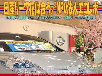 日産リーフ花似合う(3)/NPOエコレボ画像01