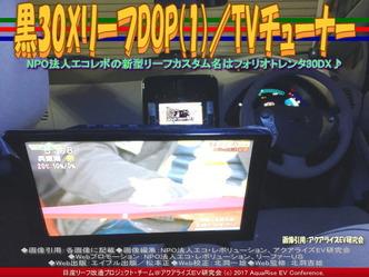 黒30XリーフDOP(1)/TVチューナー画像02