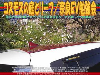 コスモスの庭とリーフ/奈良EV勉強会02