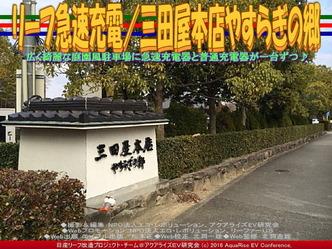 リーフ急速充電/三田屋本店やすらぎの郷01