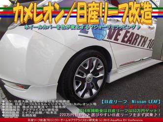 カメレオン(2)/日産リーフ改造04