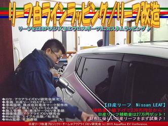 リーフ白ラインラッピング(3)/リーフ改造05