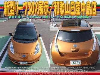 新型リーフ30X展示(2)/和歌山日産中島店01