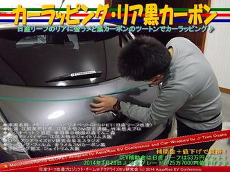 カーラッピング・リア黒カーボン@日産リーフ改造01