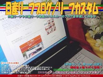 日産リーフの五自慢/リーフカスタム03