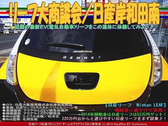 リーフ大商談会(2)/日産大阪岸和田南01