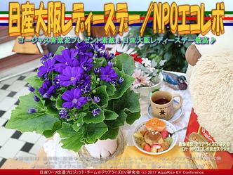 日産大阪レディーズデイ/NPOエコレボ画像02