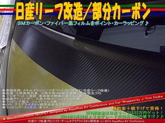 日産リーフ改造/部分カーボン@アクアライズEV研究会09