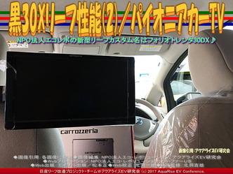 黒30Xリーフ性能(2)/パイオニアカーTV画像01