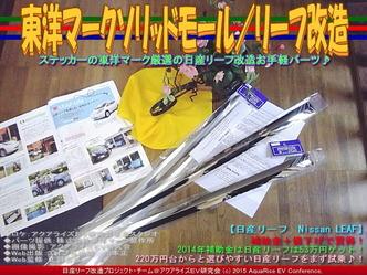 東洋マークソリッドモール/リーフ改造02