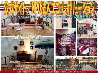 公式サイト/NPO法人エコ・レボリューション03