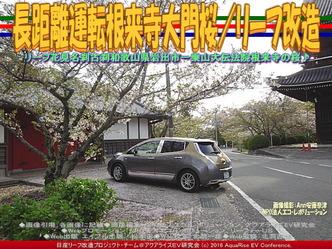 長距離運転根来寺大門桜(2)/リーフ改造03