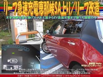 リーフ急速充電恵那峡SA上り/リーフ改造02