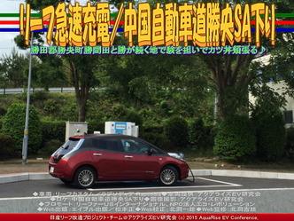 リーフ急速充電/中国自動車道勝央SA下り01