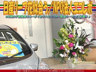 日産リーフ花似合う(2)/NPOエコレボ画像02