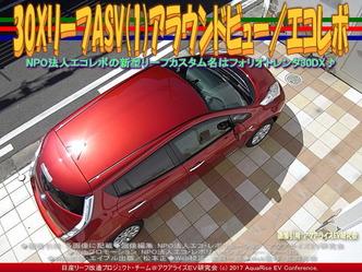 30XリーフASV(1)アラウンドビュー/エコレボ画像03