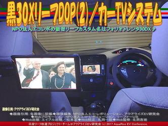 黒30XリーフDOP(2)/カーTVシステム画像03