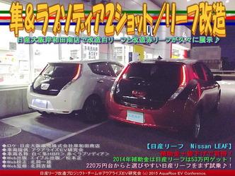 隼&ラプソディア2ショット/リーフ改造03