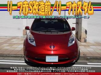 リーフ赤S改造前(2)/リーフカスタム02