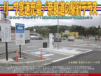 リーフ急速充電/奈良道の駅針テラス02