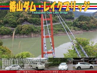 椿山ダム・レイクブリッジ@日産リーフ改造07