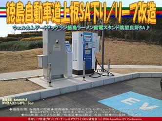徳島自動車道上板SA下り/リーフ改造02