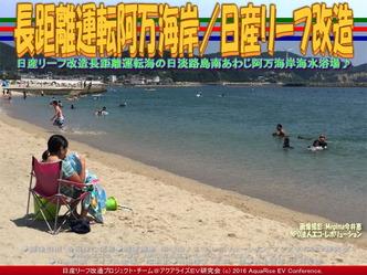 リーフ長距離運転/阿万海岸海水浴02