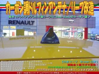 カーボン調ドルフィンアンテナ/リーフ改造03