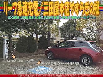 リーフ急速充電/三田屋本店やすらぎの郷05