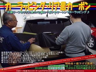 カーラッピング・リア黒カーボン@日産リーフ改造02