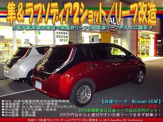 隼&ラプソディア2ショット/リーフ改造05