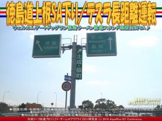 徳島道上板SA下り/テスラ長距離運転01