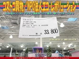コストコ買物/NPO法人エコ・レボリューション04