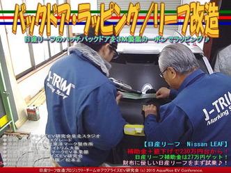 バックドア・ラッピング(3)/リーフ改造05