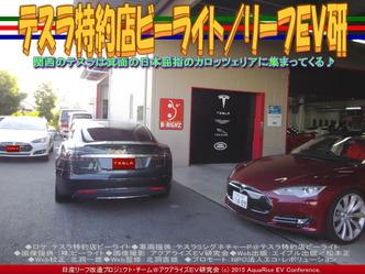 テスラ特約店ビーライト(2)/リーフEV研03