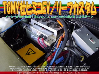 TGMY社ヒミコEV/リーフカスタム02