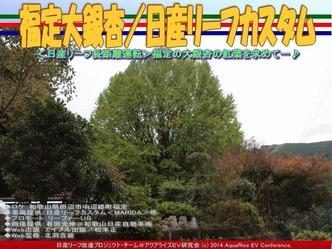 福定大銀杏/日産リーフカスタム08