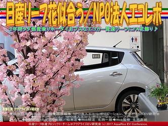 日産リーフ花似合う(5)/NPOエコレボ画像02